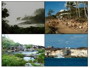 Impact of climate change on Bermuda